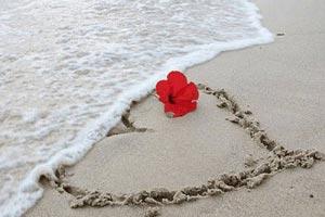 Imagenes De Amor Bonitas Las Mejores Imagenes De Amor